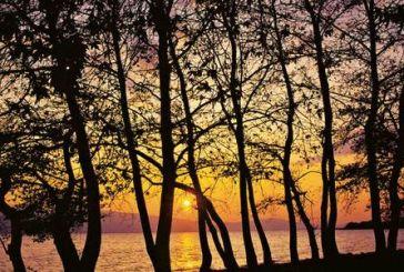 Τριχωνίδα / Προυσός: Από τη λίμνη στα έλατα