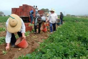 Πάρτι με επιστροφή ΦΠΑ και σε αγροτικούς συνεταιρισμούς του Νομού μας