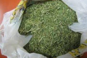 Ναρκωτικά,  χύμα καπνός και όπλα σε σπίτι σε χωριό του Βάλτου