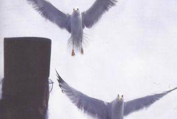 Κυκλοφόρησε το 21ο τεύχος του Περιοδικού  «Άγιος Κοσμάς ο Αιτωλός»