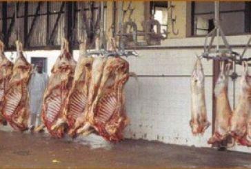Μετέφερε κρέατα χωρίς στοιχεία προέλευσης και διακίνησης
