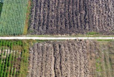 Αναβολή δημοπρασίας για εκμίσθωση αγροτεμαχίων στον δήμο Μεσολογγίου