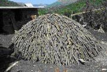 Kατάσχεση παρανόμων ανθρακοκαμίνων στο Αμπελάκι