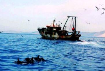Αμβρακικός: Σοβαρή απειλή η αλιεία με μηχανότρατα