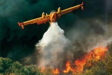 Μάχη με τις φλόγες στην Πρέβεζα – Κάηκαν ένα εργοστάσιο και θερμοκήπια