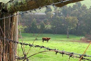 Επιμένει το υπουργείο Οικονομικών για φόρο στα αγροτεμάχια των αγροτών