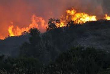 Εστία φωτιάς στο Ξηρόμερο