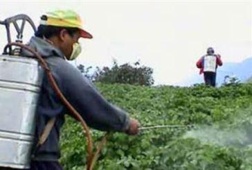 Τριάντα προσλήψεις για την καταπολέμηση του δάκου στην Π.Ε. Αιτωλοακαρνανίας