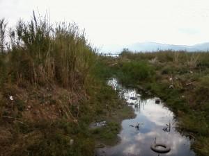 Η περιβαλλοντική υποβάθμιση της Τριχωνίδας στην Κομισιόν