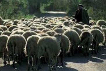 Πληρωμή Εξισωτικής Αποζημίωσης έτους 2012  για αγρότες και κτηνοτρόφους