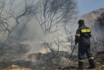 Κατασβέστηκαν εστίες φωτιάς σε Περιθώρι και ορεινό Βάλτο