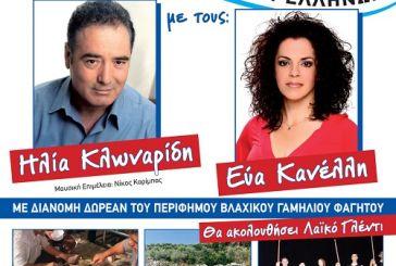Πολιτιστικές εκδηλώσεις στην Παλαιομάνινα