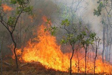 Εστίες φωτιάς στο Βάλτο