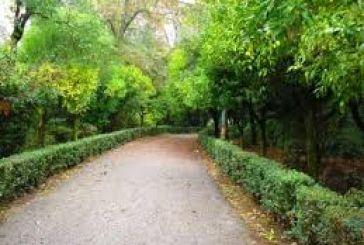 Διαφωνία ΣΥΡΙΖΑ Αγρινίου με την πολιτική προσέγγιση για το Πάρκο