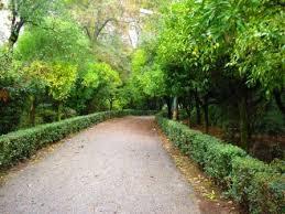 Πάρκο: Προχωρούν τα έργα που δεν αφορούν κοπή δέντρων και θάμνων