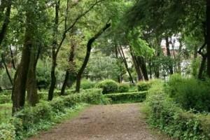 H NΔ Αγρινίου για την ανάπλαση του Πάρκου