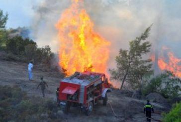 Φωτιά κοντά στη Σκουτεσιάδα