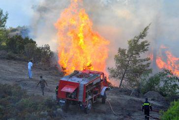 Κινητοποίηση για φωτιές σε Χρυσοβίτσα Ξηρομέρου και Κουτσοχέρι Μεσολογγίου