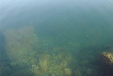 Ο Αμβρακικός με υποβρύχια κάμερα