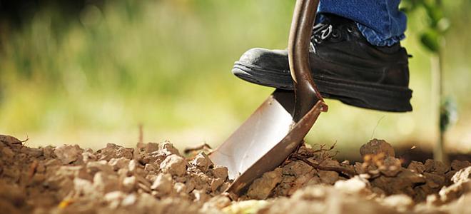 Οι Ελληνες επιστρέφουν στα χωράφια- 28 γεωργικά επαγγέλματα που επιδοτούνται «χρυσά» από το ΕΣΠΑ [λίστα]