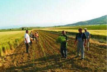 Σύσκεψη στο Καινούργιο για την αγροτική-κτηνοτροφική ανάπτυξη
