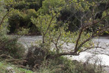Ο ποταμός Ζέρβας μεταξύ Μαλευρού-Ποταμούλας (Vid)