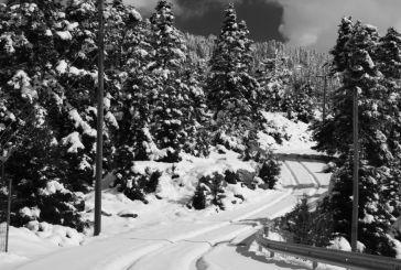 Ορεινή Ναυπακτία…λευκή μαγεία (φωτό)