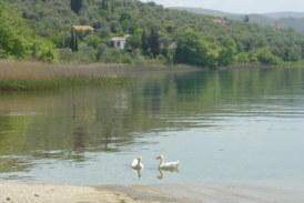 Προχωρά η προκήρυξη  διαγωνισμού μελετών για την χωροταξική ανάπτυξη της περιοχής της Τριχωνίδας