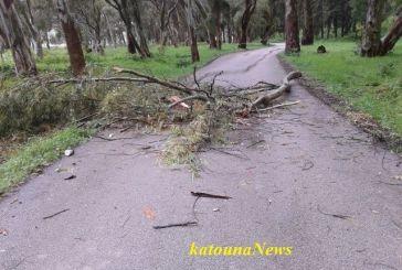Βόνιτσα: Έκλεισε ο δρόμος από σπασμένα κλαδιά δένδρων…