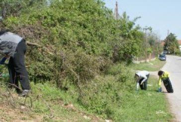 Εθελοντικός καθαρισμός στην περιοχή εργατικών κατοικιών Μεσολογγίου