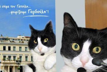 Γορδούλης: ο γάτος που διεκδικεί τη δημαρχία Αθήνας