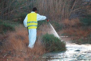 Μεσολόγγι: ξεκίνησαν οι ψεκασμοί για την καταπολέμηση των κουνουπιών