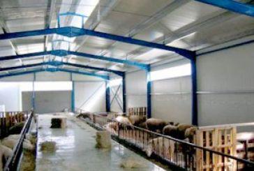 Κομφούζιο με τις κτηνοτροφικές μονάδες στο Γ.Π.Σ.