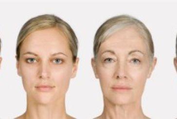 Αναστροφή της γήρανσης με μετάγγιση αίματος προτείνουν οι επιστήμονες