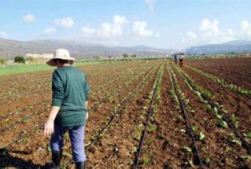 50.000 στρέμματα «διψάνε» στην Αιτωλοακαρνανία
