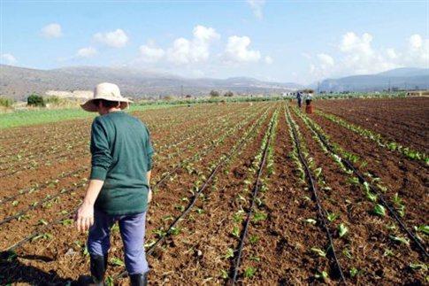 Υποβολή Ενιαίας Δήλωσης Εκμετάλλευσης νέων αγροτών