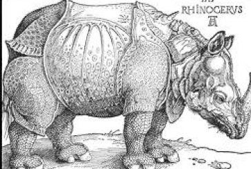 «Ο Ρινόκερος» του Ιονέσκο στο ΔΗΠΕΘΕ