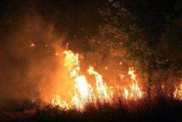 Κατάσβεση φωτιάς στον Αστακό