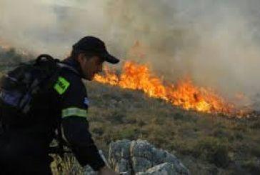 Μεγάλη πυρκαγιά στην Kάτω Χρυσοβίτσα – Eνδείξεις για εμπρησμό