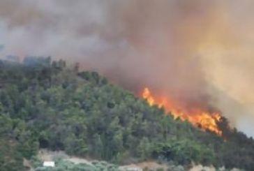 Πυρκαγιά στη Σκουτεσιάδα