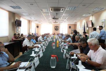 Ψηφίσματα του Περιφερειακού Συμβουλίου  για την Γάζα και την Μανωλάδα
