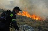 Σε εξέλιξη φωτιά στην Πετρώνα Βάλτου
