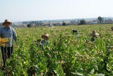 Γραφείο Αγροτικής Ανάπτυξης στο Αγρίνιο, αντιδράσεις στο Μεσολόγγι