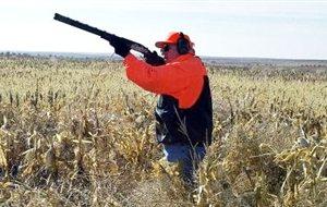 Παρατείνεται για δύο έτη το κυνήγι στον Αμβρακικό κόλπο