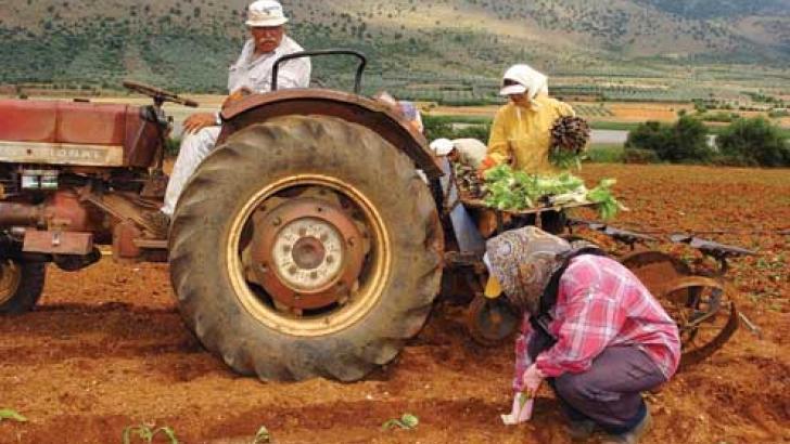 Σύνταξη στα 62 για τους αγρότες με αξιοποίηση πλασματικών χρόνων