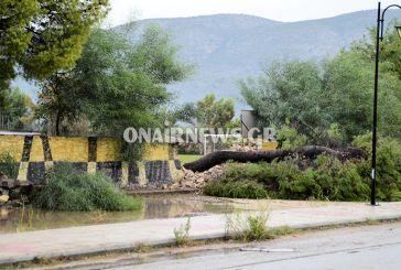 Έπεσαν δέντρα στο γήπεδο Αιτωλικού