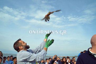 Απελευθέρωση πουλιών στο Μεσολόγγι