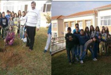 Περιβαλλοντικές Δράσεις από το 12ο Δημοτικό Σχολείο Αγρινίου