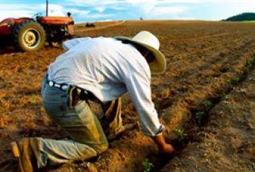 Μέτωπο 14 Ενώσεων Νέων Αγροτών κατά της εφαρμογής της νέας ΚΑΠ