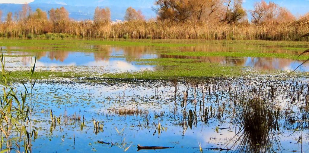 Πλημμύρες στα χωράφια του Αγγελοκάστρου